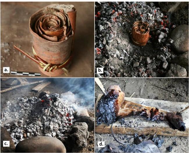 첫 번째 실험 과정. 자작나무 껍질을 동그랗게 말고, 뜨거운 재와 숯 사이에 묻어둔다. 이후 꺼내 껍질을 풀면 타르가 나온다. - Paul Kozowyk 제공